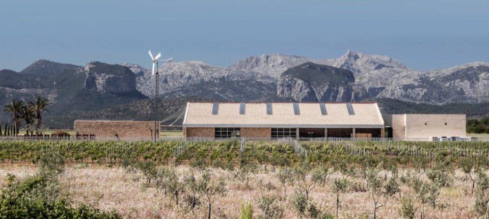 Solarna vinarija s prijatnom klimom zahvaljujući krovnoj izolaciji od plute