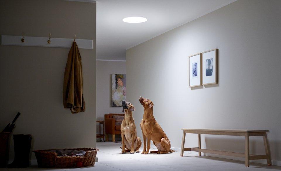 Inovativno rešenje za osvetljenje mračnih prostorija prirodnim svetlom