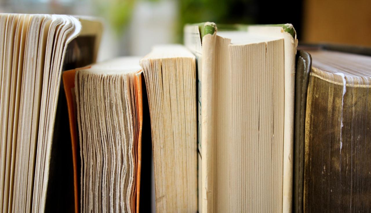 Ove knjige o arhitekturi možete besplatno pozajmiti iz najveće onlajn biblioteke