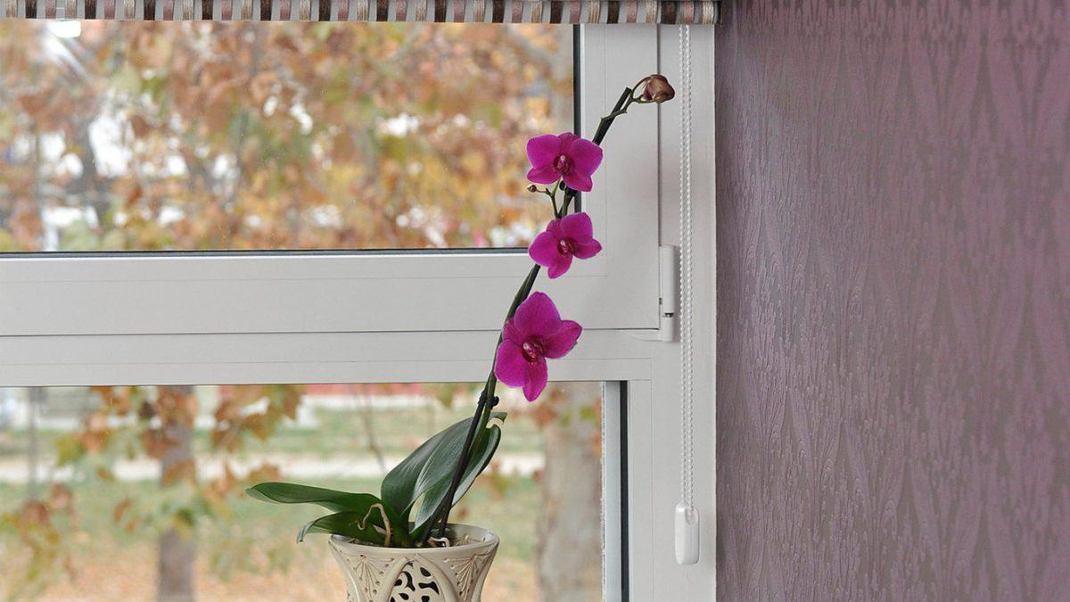 Šta izabrati: PVC, drveni ili aluminijumski prozor?