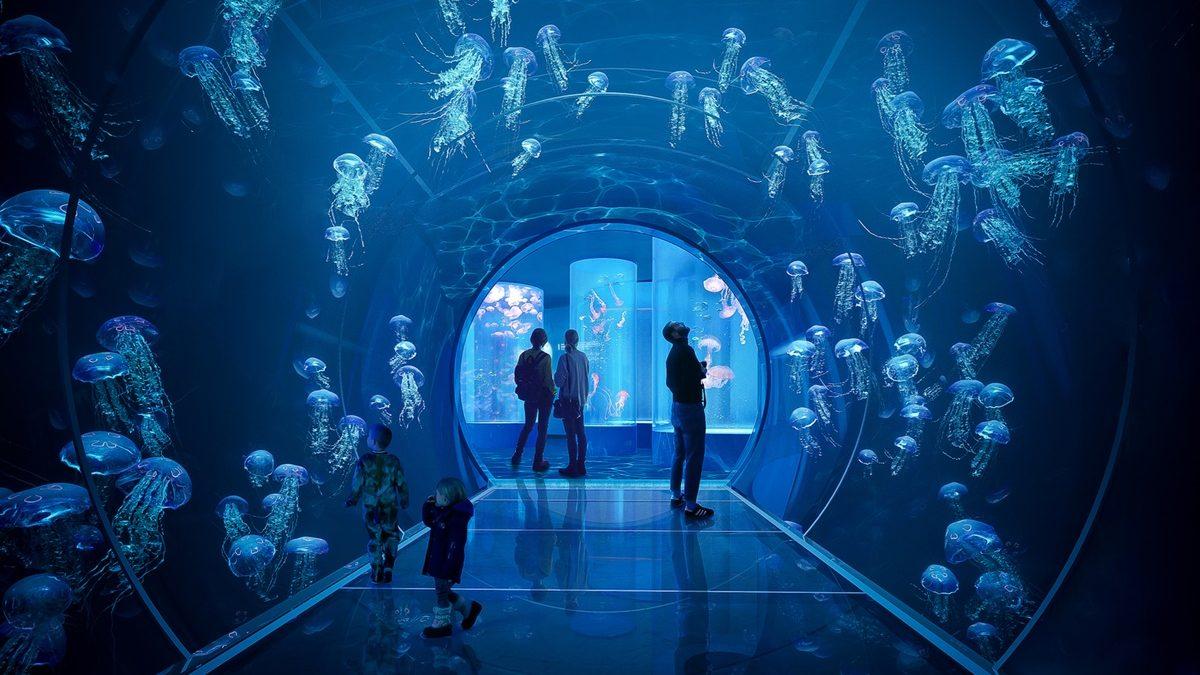 Beč uskoro dobija novi akvarijum: Pogledajte jedno od impresivnih rešenja