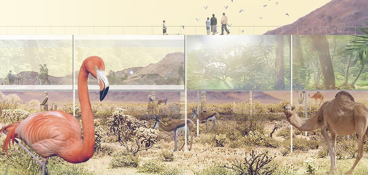 Bez barijera: Ovako će izgledati zoološki vrtovi u 21. veku
