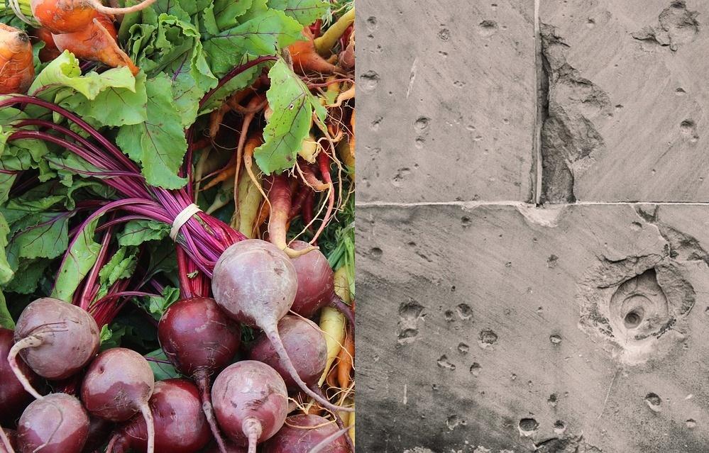 Naučnici pronašli način da od šargarepe dobiju kvalitetniji cement