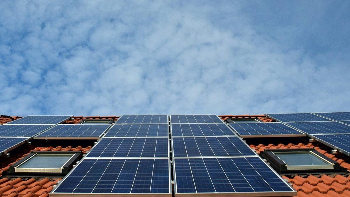 Ozloglašena bakterija pomaže solarnim panelima da prave energiju tokom oblačnih dana