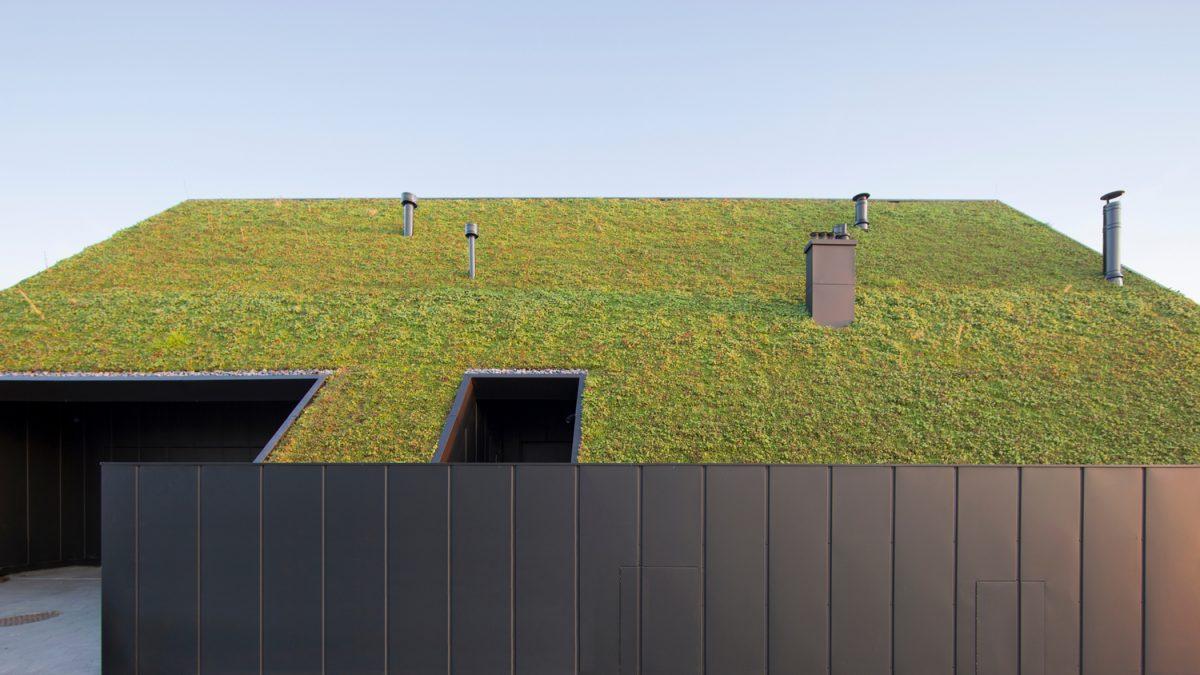 Kuća iza zelenog krova koja vraća prirodi više nego što joj je uzeto