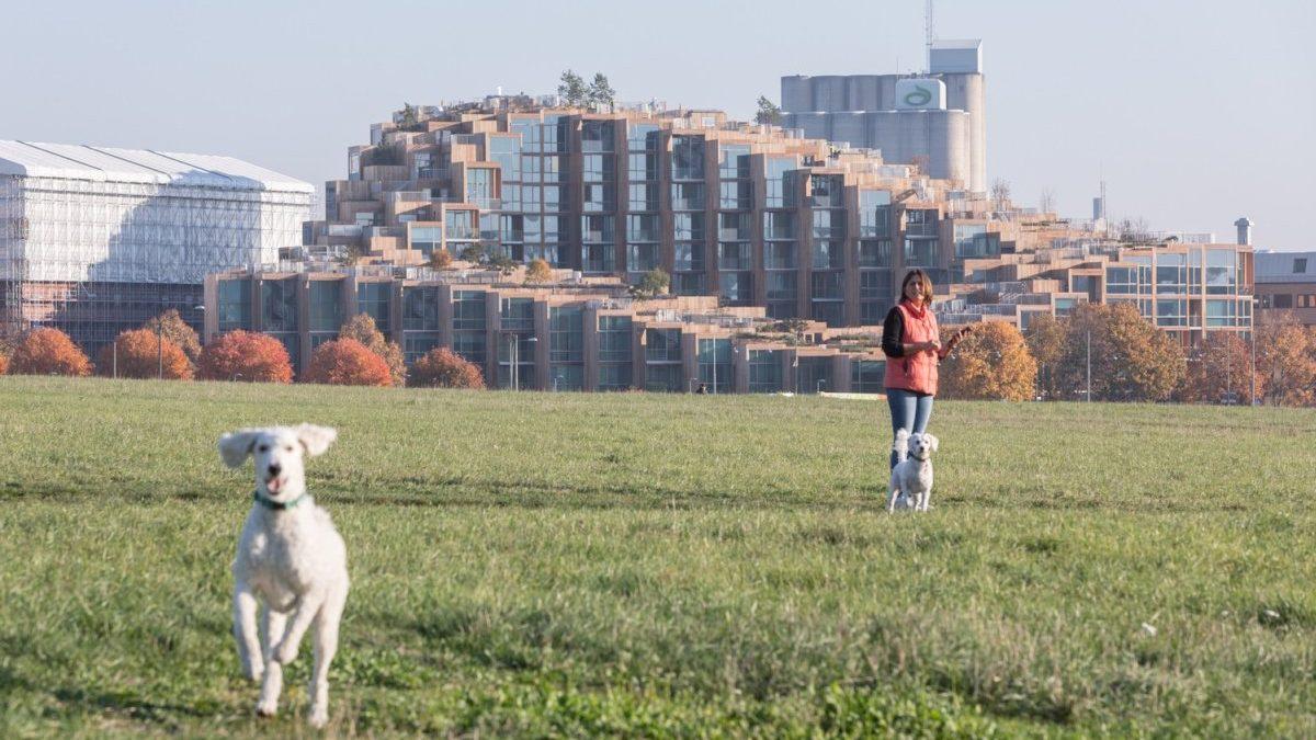 Ova kaskadna zgrada u Stokholmu izgleda kao pošumnjeno brdo