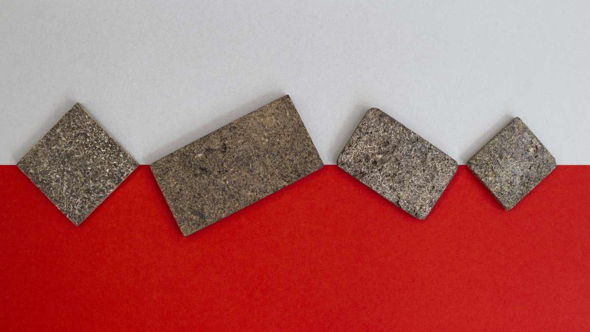 Od reciklirane ljuske krompira prave ploče za nameštaj koje su ekološka alternativa MDF-u