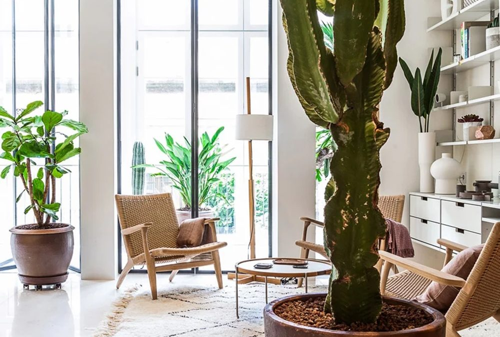 Ovaj stan od 90 kvadrata izgleda još veći zahvaljujući modularnim rešenjima i bašti u zatvorenom