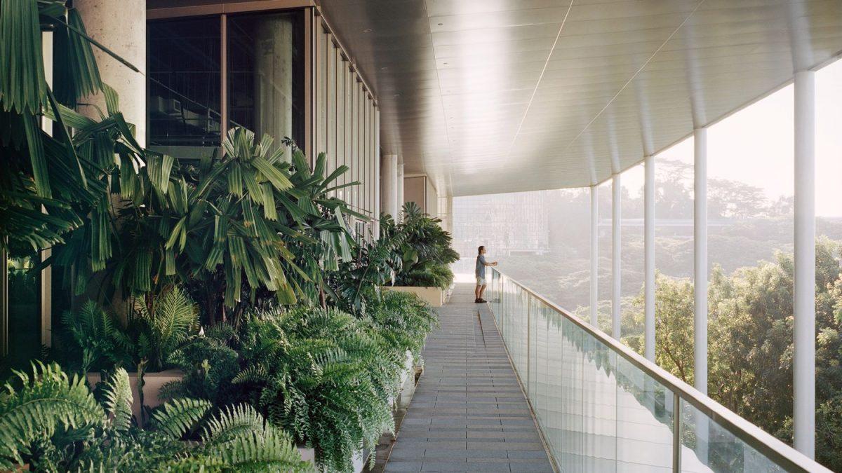 Ova odživa škola briše granice između ekologije i dizajna