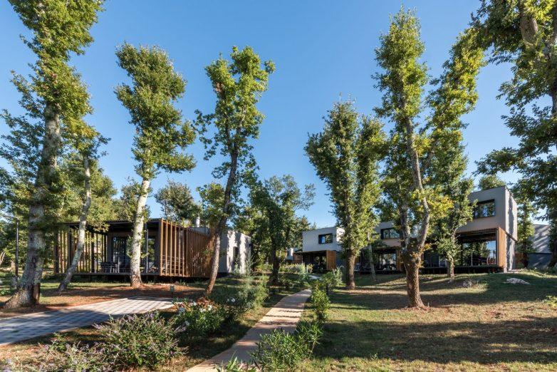 Flora je ušuškana u gustu hrastovu šumu jer je stepen izgrađenosti ostao isti; Foto: Bosnić+Dorotić