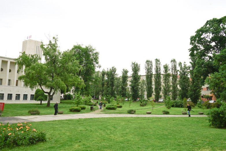 Park APV
